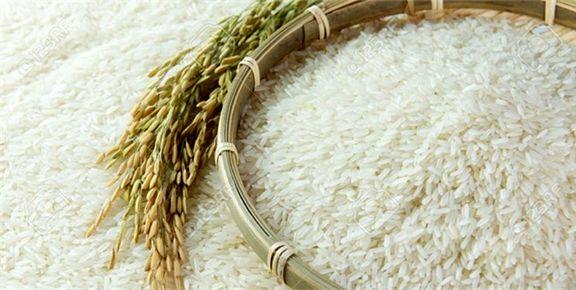 قیمت برنج خارجی ۲برابر شد