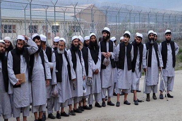 بروز اختلاف بین کابل و طالبان در مورد آمار زندانیان آزاد شده