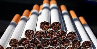 افزایش صادرات سیگار و توتون /واردات تنباکو کاهش یافت