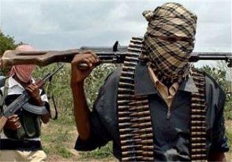 ۱۰ کشته در حمله تروریستی نیجریه