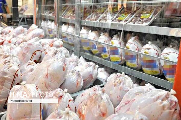 کمبود عرضه، قیمت مرغ را افزایش داد/ با شبکه پرابهام توزیع نهادههای دامی روبرو هستیم/ نمیتوان با گوشت منجمد بازار را کنترل کرد