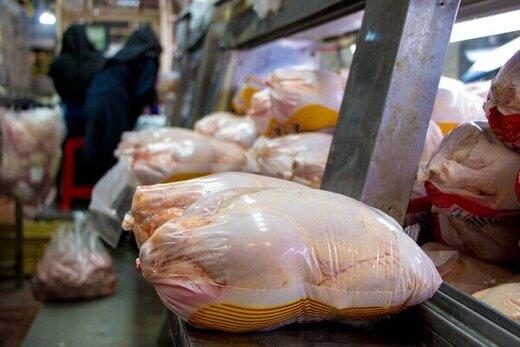 وررشکستگی مرغداران با نرخهای دستوری
