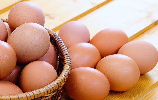 تشدید بازرسیها بر تخممرغ، گوشت مرغ، روغن، لوازم خانگی، حبوبات و فولاد