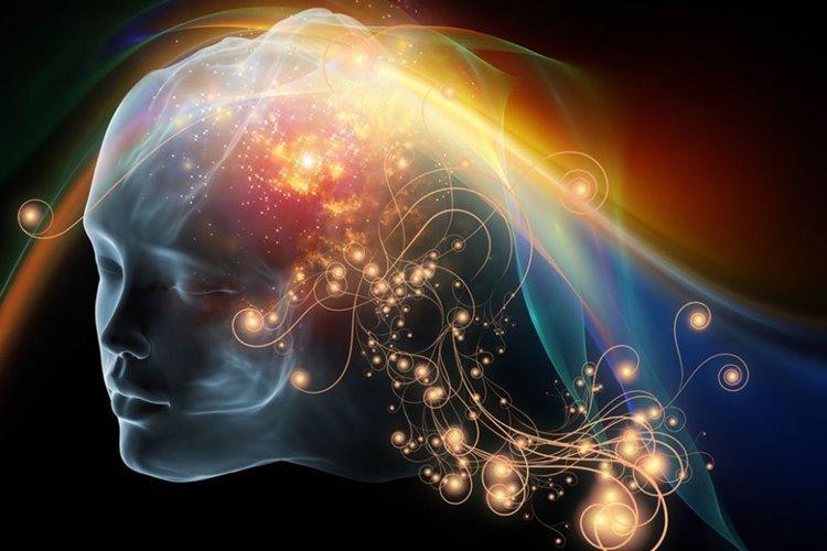 مغز انسان چگونه افکار خود را از دیگران تکفیک میکند