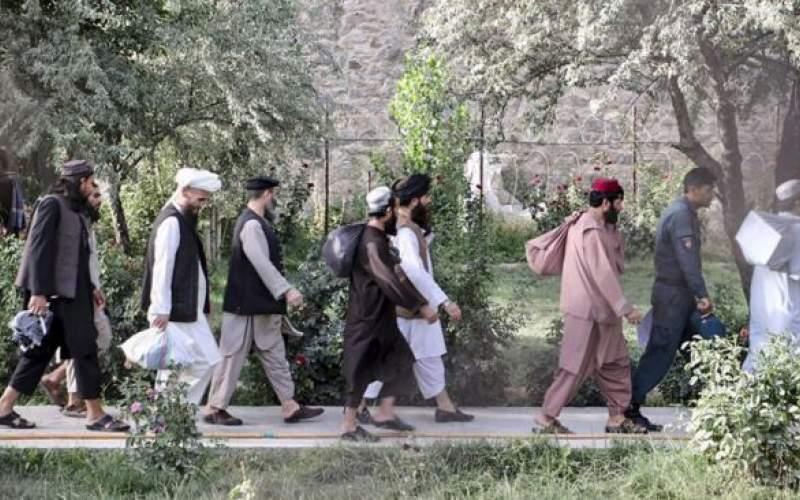 آزادی ۸۰ عضو خطرناک طالبان از زندان