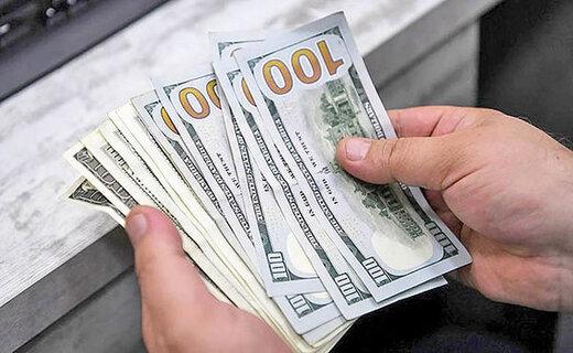 دولت توانایی کنترل بالا رفتن قیمتها در بازار ارز را دارد؟