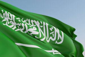 شاهزاده سعودی: امارات صدای ماست