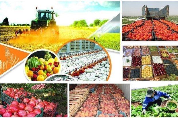 رعایت استانداردهای اروپا برای صادرات محصولات کشاورزی ضروری است