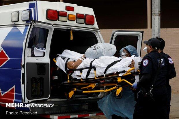 شمار مبتلایان به کرونا در آمریکا از ۵ میلیون نفر گذشت