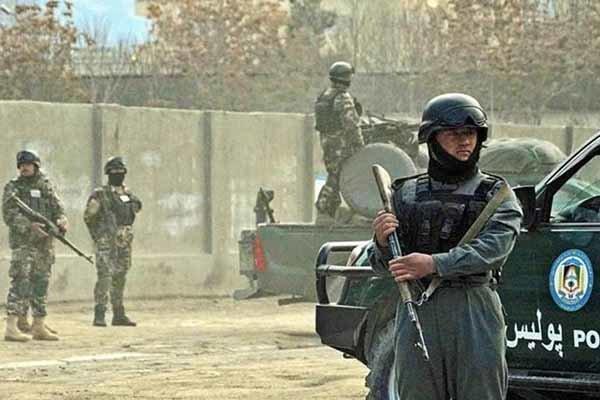 ۱۱ نیروی امنیتی افغانستان در ولایت دایکندی کشته و زخمی شدند