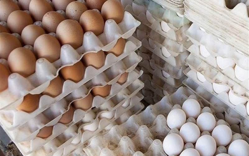 گرانی مرغ و تخم مرغ هم تقصیر آمریکاست؟!