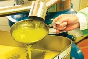 ۵۵ درصد مواد اولیه روغنهای نیمه جامد وارداتی است/ بانک مرکزی در تخصیص ارز تسریع کند