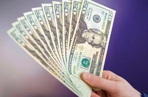 ۲ دلیل افزایش نرخ ارز در هفتههای اخیر