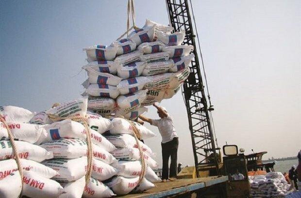 ۲۰۰ هزار تن برنج وارداتی در حال فاسد شدن/ هیچ ارزی تخصیص داده نشد