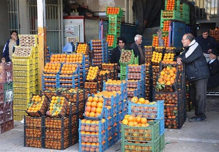 بازار میوه آشفته بود آشفتهتر شد / «ستاد تنظیم بازار» راحت بخواب که دلالها بیدارند!