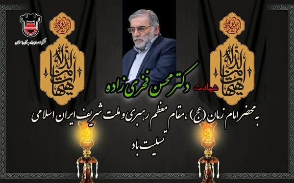 پیام تسلیت مدیرعامل ذوبآهن اصفهان در پی شهادت دکتر حاج محسن فخریزاده