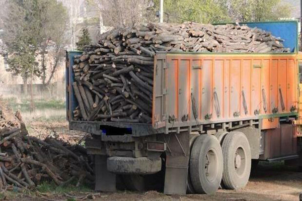 همکاری ناجا با منابع طبیعی در برخورد با متخلفین و قاچاقچیان چوب