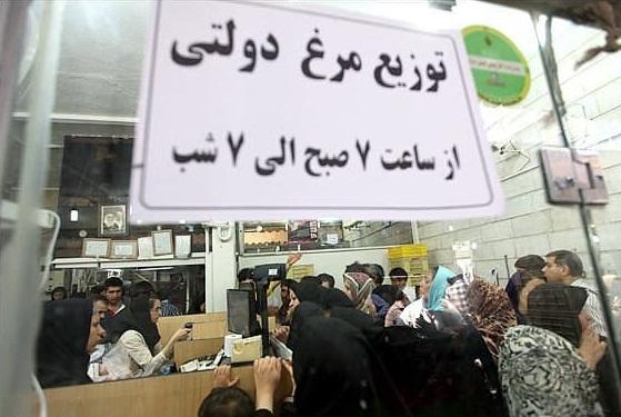 دلار جهانگیری همچنان قربانی میگیرد/ بازار مرغ در آشوب نهاده ۲ نرخی و توزیع فاجعهبار نهاده دولتی