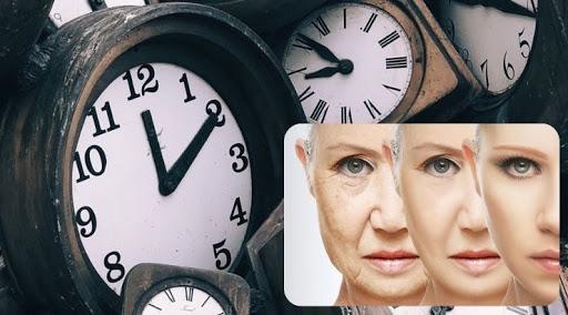 محققان با جوانسازی سلولهای چشم روند تضعیف بینایی را معکوس کردند