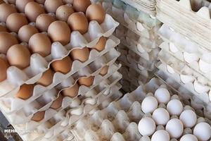 تخم مرغ همچنان بر فراز آسمان گرانی