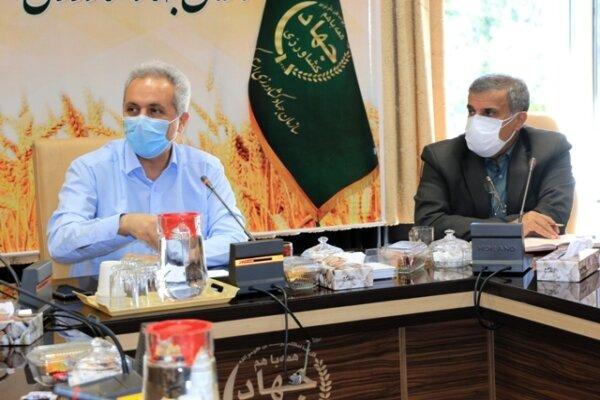 صدور مجوز برای کشتار ۴۱۱ هزار قطعه مرغ در کردستان