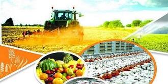 مشکلات لجستیکی، پاشنه آشیل صادرات محصولات کشاورزی