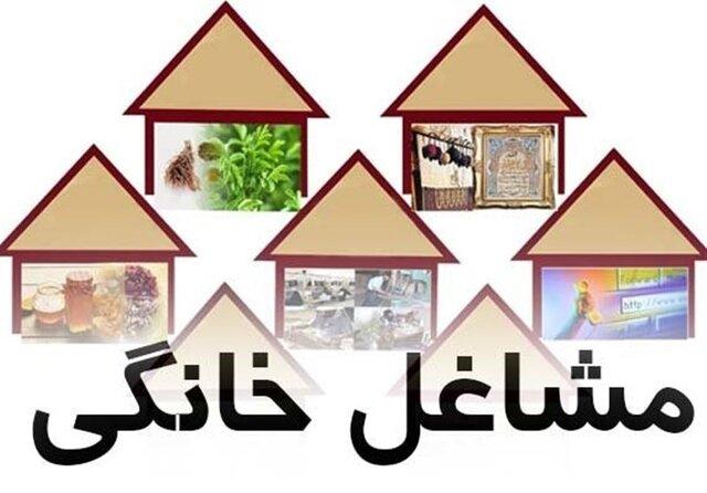 ثبت نام ۱۴۸۳ متقاضی لرستانی در طرح ملی توسعه مشاغل خانگی