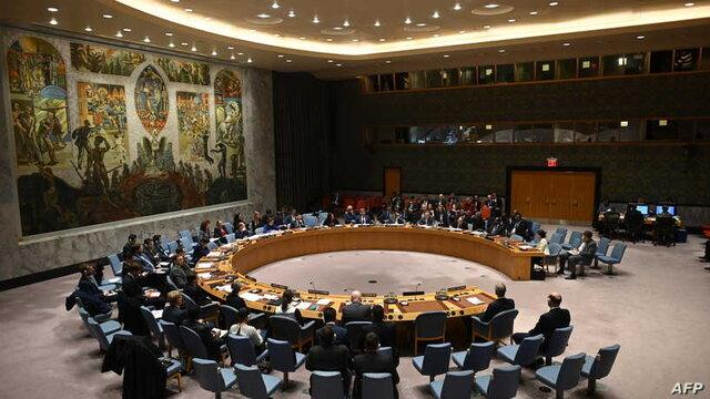 درخواست مجدد کشورهای عربی برای برخورداری از کرسی دائم در شورای امنیت