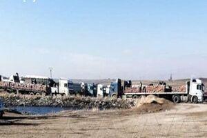 آمریکا۷۰ کامیون نفت و گندم سوریه را به سرقت برد