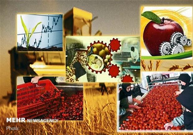 ایران و غنا بر توسعه همکاریهای اقتصادی و کشاورزی تاکید کردند