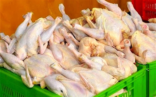 تابش: قیمت مرغ و شکر به روال قبل بازمیگردد