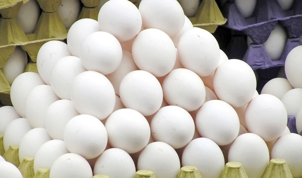 عرضه روزانه ۳۰۰ تن تخممرغ در بار انداز تهران