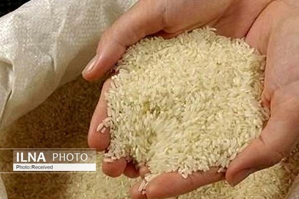 فاصله قیمتی ۱۴ هزار تومانی قیمت برنج از کشاورز تا مصرف کننده/ سوء استفاده دلالها از پاسکاری وزارت جهادکشاورزی و صمت
