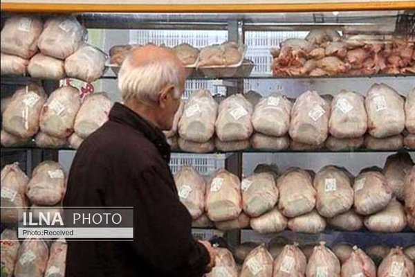 انحراف مرغ دولتی از مسیر توزیع / مرغهای دولتی سر از  بازار سیاه در میآورند