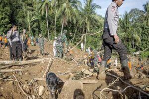 رانش زمین در اندونزی با ۵ تن کشته و ۷۰ تن ناپدید