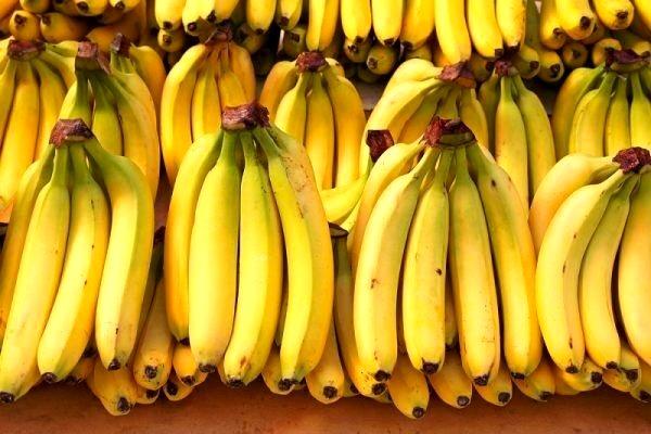 فروش مجوز ۶ میلیونی واردات موز به ۲۰۰ میلیون تومان/ قیمت هر کیلوگرم نارنگی، ۲۰ تا ۴۰ هزار تومان شد/ ۷ هزار تن موز منتظر ترخیص هستند