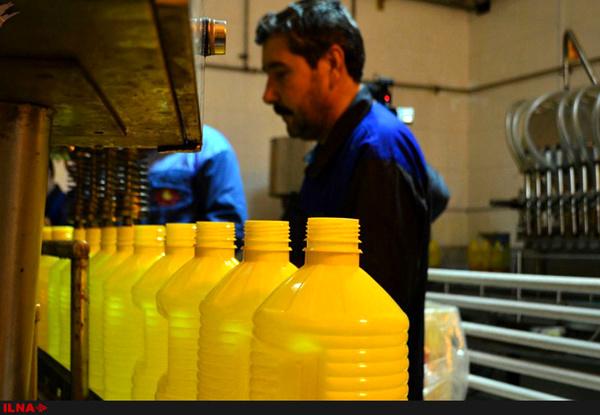 تولید روغن ۳۰ درصد بیشتر از مصرف کشور است/ تحویل ۲۰۰ هزار تُن روغن خام به کارخانه در اسفندماه