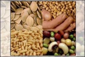 ارائه راهکارهای دانش بنیان برای ۲۷ نیاز صنایع نان و غلات
