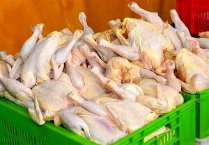 مرغ ماه رمضان گران نمیشود