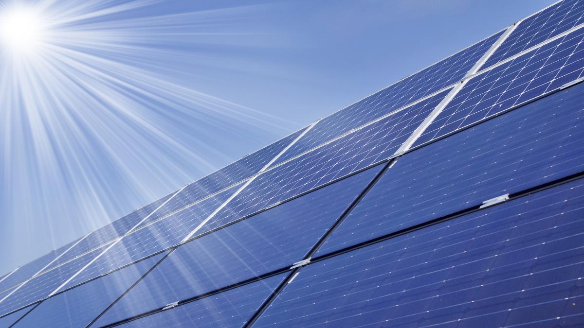 محققان با موی انسان عملکرد پنلهای خورشیدی را بهبود میدهند