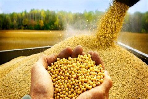 درخواست اختصاص ۲۰ هزار میلیارد ریال برای نهادههای کشاورزی