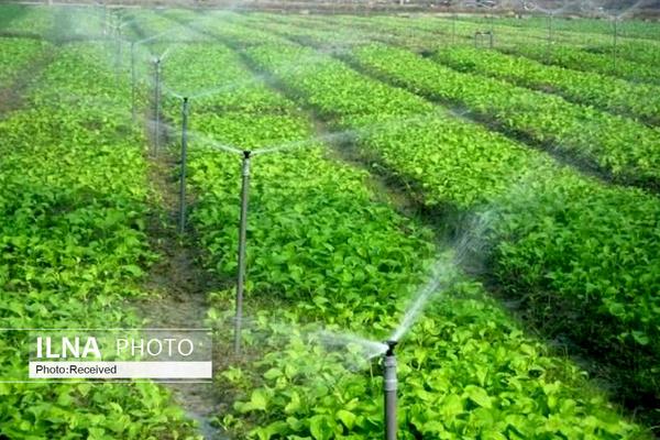 افزایش ۴۳۰ درصدی اعتبار یارانه نهادهها، عوامل تولید و خرید تضمینی محصولات کشاورزی