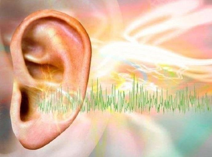 معرفی داروی جدید از جفت انسان برای درمان وزوز گوش