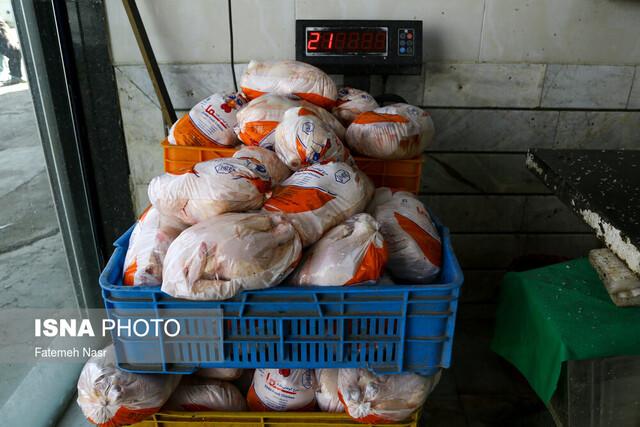 کمبود مرغ زنده برای کشتار در سطح کشور