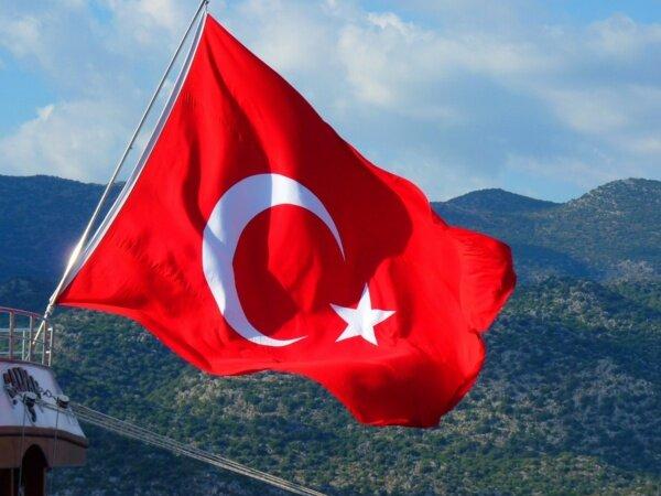 ترکیه هرگونه دخالت در صحنه سیاسی الجزایر را رد کرد