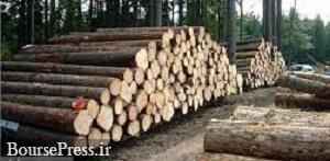 بزرگترین باند قاچاق چوب در شمال متلاشی شد