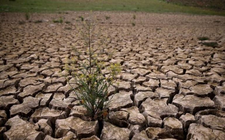 تهدید امنیت غذایی، شوری زمین و فرونشست
