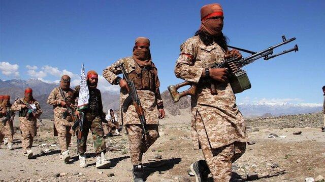 """دیلیبیست: طالبان آماده است تا """"عزیز"""" القاعده باشد"""