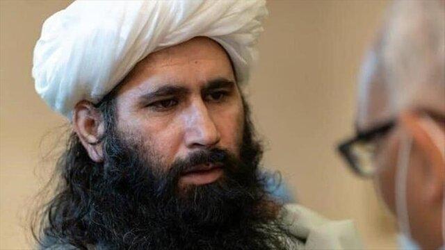 طالبان خواستار انحصار قدرت نیست