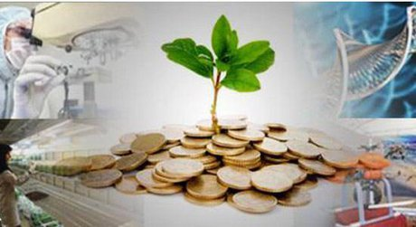 هدفگذاری بانک صادرات برای افزایش اعطای تسهیلات به شرکتهای دانشبنیان